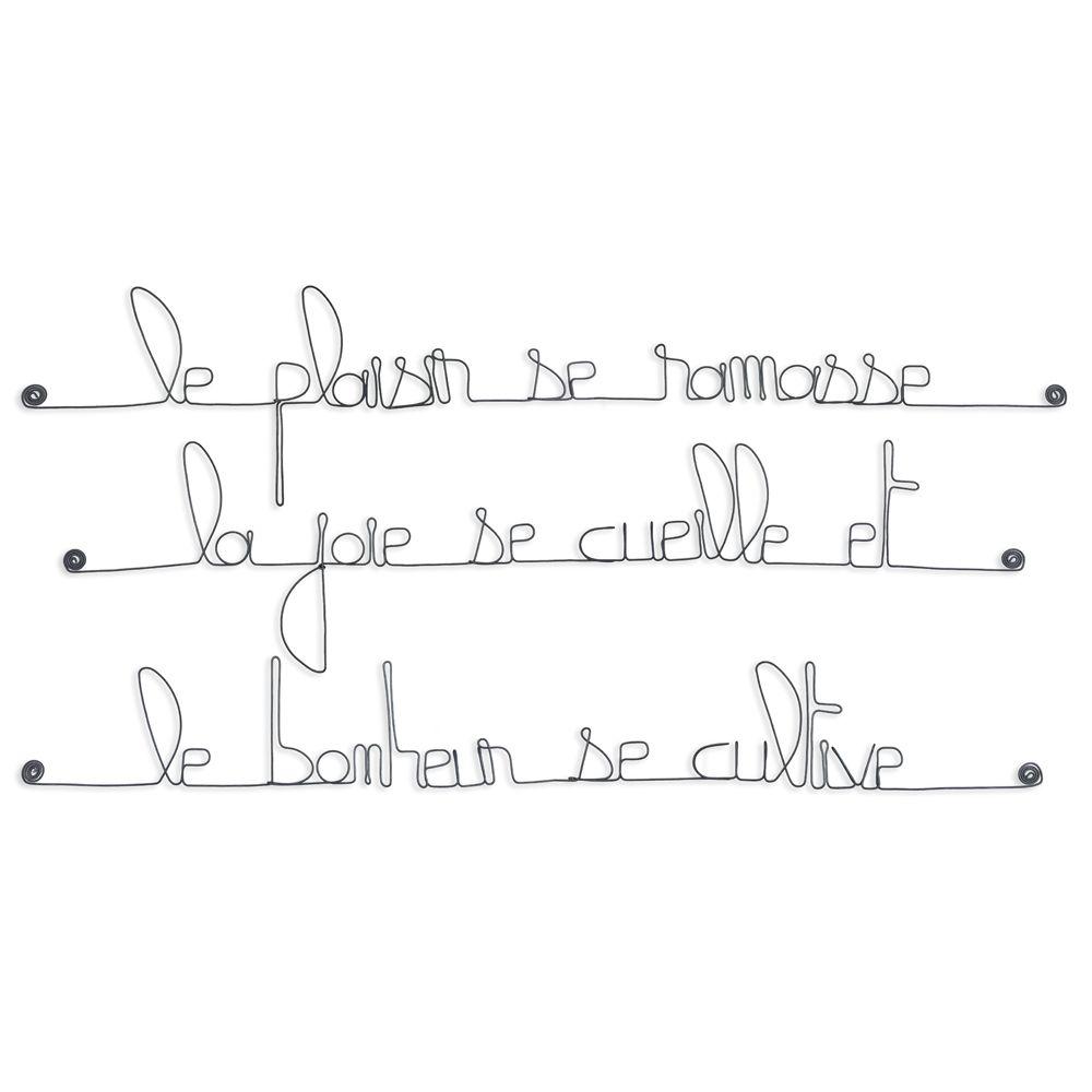 Citation En Fil De Fer Le Plaisir Se Ramasse La Joie Se Cueille Et Le Bonheur Se Cultive à Punaiser Bijoux De Mur Bijouxdemur Com